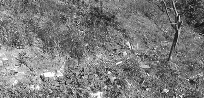 Lokaliteti rane Vizantije u okolini Žagubice