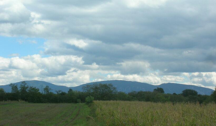 "Neolitsko naselje ""Belovode"": Кremene alatke (IV)"